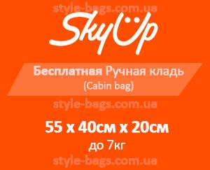 размер ручной клади SkyUp